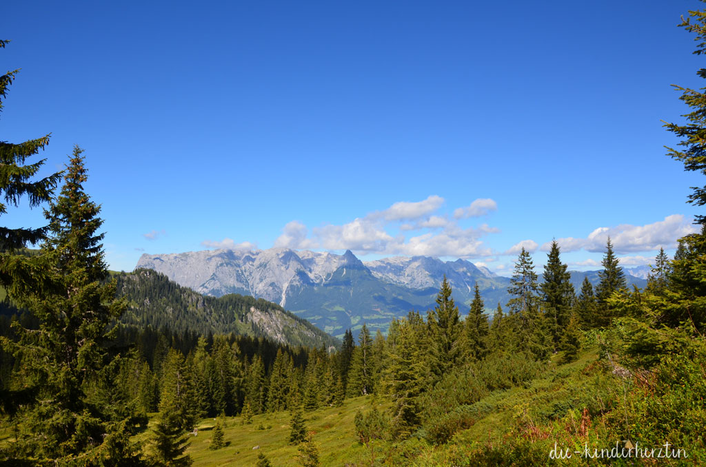 Arthurhaus-Fernweh-Reisen-Österreich-Wandern-Bergpanorama