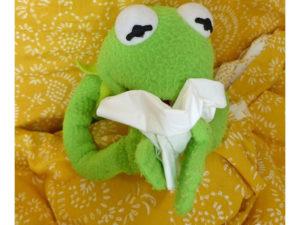 Infekte Infektanfälligkeit kranker Frosch