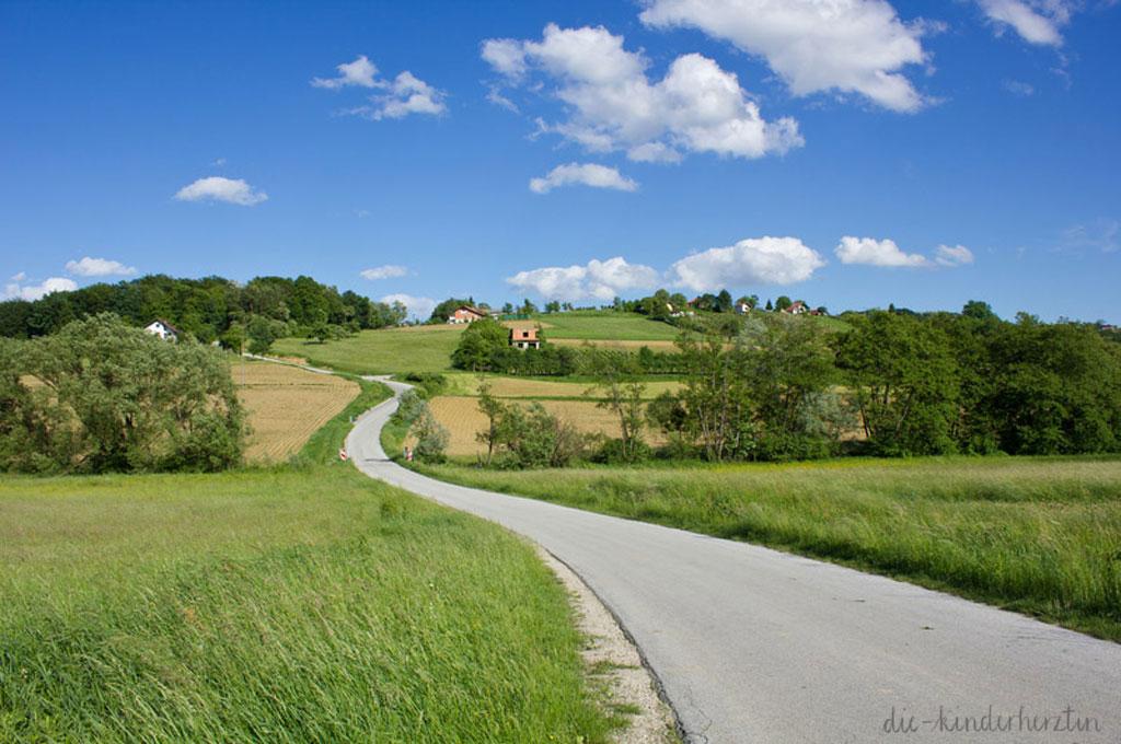 Landschaft Medimurje