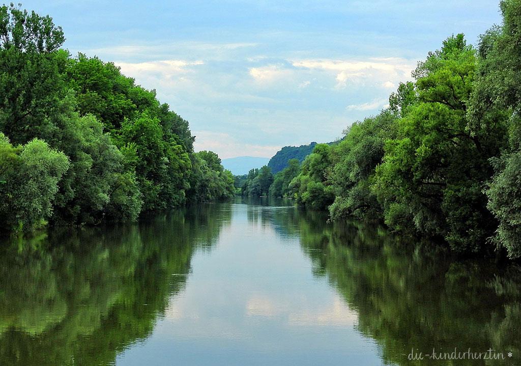 Flusslauf Mur