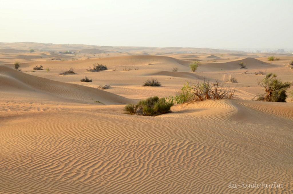 Dubai Wüste Dünen