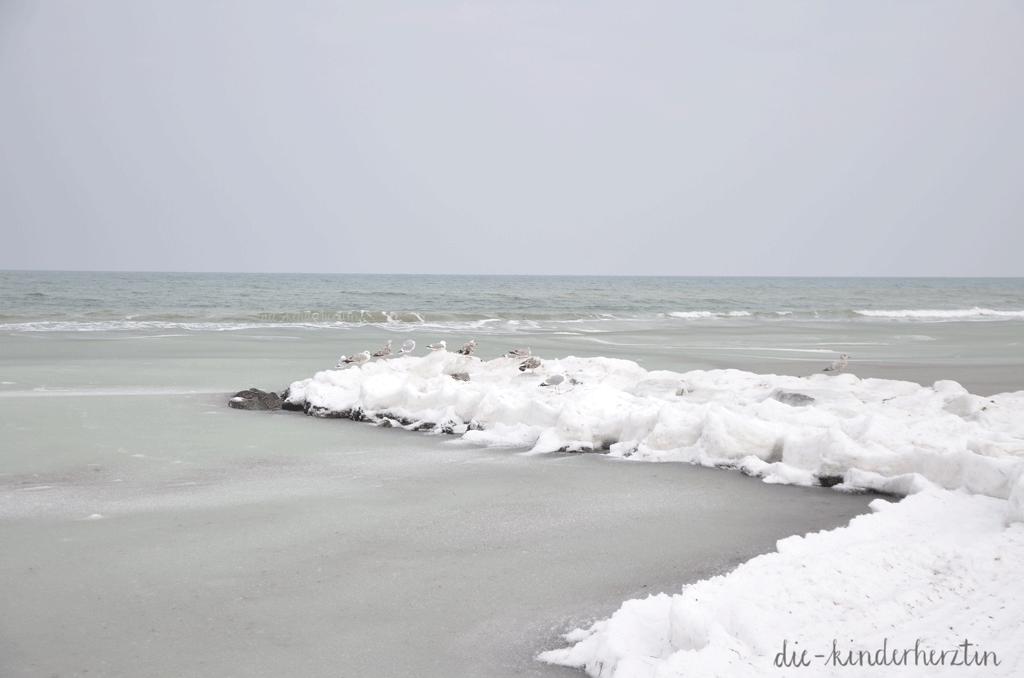 Ostsee im Schnee- und Eisgewand, Möwen auf gefrorenen Steinen am Meer und verschneiter Küste