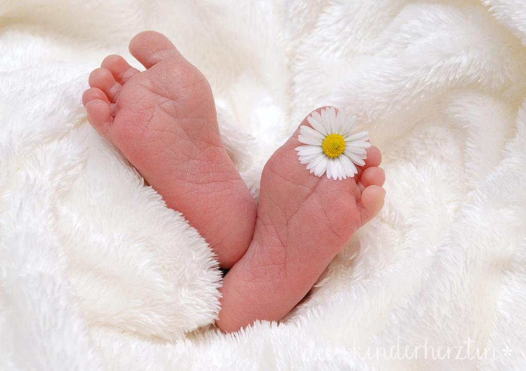 Der Kreißsaal: zwei kleine Babyfüße mit Gänseblümchen